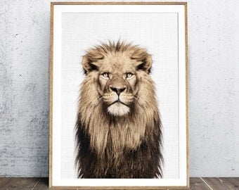 Lion Print, Nursery Animal Print,  Lion Portrait, Animal Print, Lion Wall Art, Safari Animal Decor, Boy Gift, Digital Print, Photography