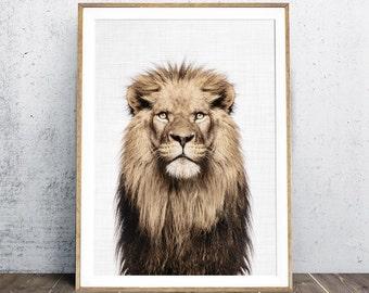 Lion Print, Nursery Animal Print,  Lion Portrait, Animal Print, Lion Wall Art, Safari Animal Decor, Boy Gift, Digital Print, Photography