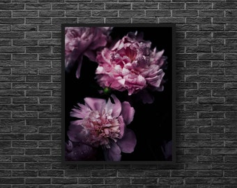 Pink Peony Print - Peony Photography - Pink Flower Print - Black Background - Botanical Print - Flower Wall Decor - Peony Photo - Vertical