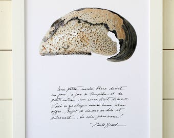 Blue mussel poster with calligraphied poetry