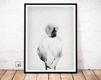 Flamingo Download Flamingo Decor Flamingo bird Flamingo Poster Printable Flamingo Print Flamingo Wall Art Black And White Decor Room Ideas
