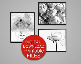 Peony Photography - Black and White Flower Photography - Digital Download Set of 3 Prints 8x10 / A4