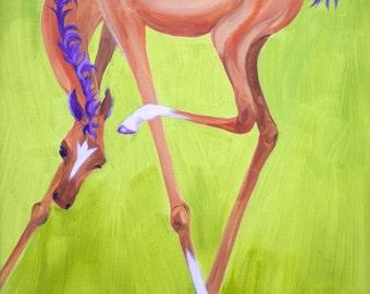 horse, foal, scratching, itchy, ear, buckskin, bay