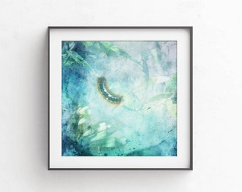 Caterpillar picture, 10x10, Aqua blue photography, Printable picture, Pastel decor, Boy room decor, Nature photography, Dreamy photograph