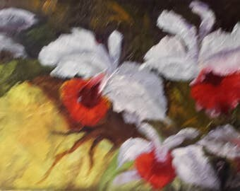 Cattleyea Orchids, floral,flowers,oils on canvas,Barbara Haviland Texas Contemporary Artist