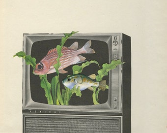 The nature channel. Original collage by Vivienne Strauss