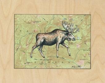 Moose art on topography map, Archival print, wildlife illustration, animal print, kids bedroom art, Moose art print, vintage style painting