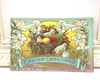 Vintage Easter Postcard, Vintage Postcard, Easter Card, Easter Ephemera, Easter Greetings, Easter Chicks, Colored Easter Eggs, White Flowers
