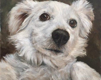 """8"""" x 8"""" Custom Pet Portrait Oil Painting - animal painting - dog art - gifts for dog lovers"""