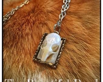 Deer Mouse Skull Necklace