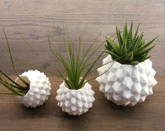 indoor planters round geometric decor gift set studded planter set - air plant holder