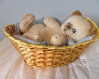 Real Soft Toys Kitten in Basket - Siamese Cat in Basket - Siamese Kitten on Blue Blanket