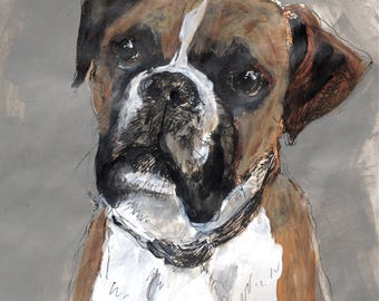 Boxer dog, original ink sketch & acrylic colour wash on paper