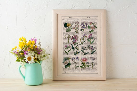 Summer Sale Wild flowers collection Print on Vintage Dictionary Book page, Wild flora art, Wall art naturalist illustration BFL215