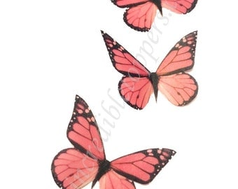 Coral Monarchs EDIBLE Butterflies -  Monarch Cake Decorations - Butterflies For Cakes, Cake Supplies, Bakery Supply Shop