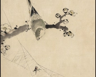 Japanese Art. Fine Art Reproduction.  A Bird perched on a branch watching a spider, c.1830 by Hokusai. Fine Art Print