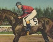 Citation at Hialeah - Vintage 1940s Tinted Linen Triple Crown Winning Racehorse Postcard