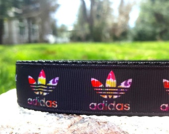 Colorful Sneaker 1 Inch Width Dog Collar
