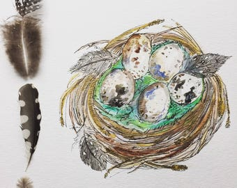 "8x10 Original Art ""The Quail Nest"" Watercolor Ink on linen watercolor paper-Bird Eggs-Nest-Woodland-Nature Art"