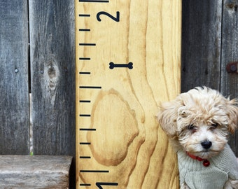 Height Marker for Growth Chart Ruler - Mini Dog Bone Decal - Measuring Mark