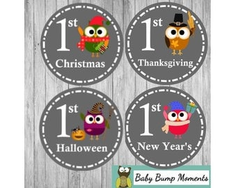 First Holiday Stickers, Holiday Baby Sticker, Owl Baby Shower Gift,  Gifts for New Moms
