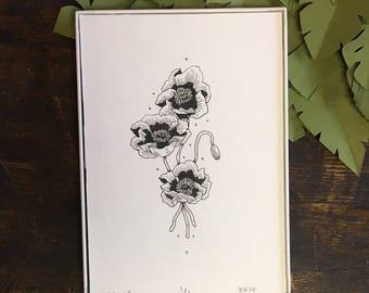 Poppy Original Pen and Ink Illustration | Nature Inspired | Botanical Illustration | Scientific Illustration | Vintage Inspired