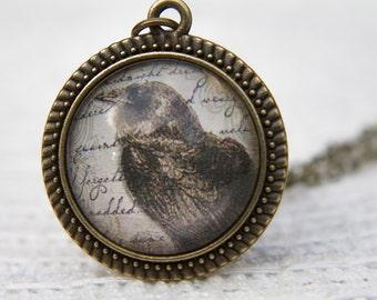 Raven Necklace, Raven Pendant, Black Raven, Bird Necklace, Bird Pendant, Gothic, Glass Dome Necklace, Crow Necklace