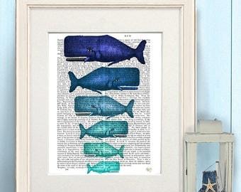 Whale poster - Blue Whale Family - beach house decor sealife decor whale illustration beach home decor coastal home wall art nautical decor