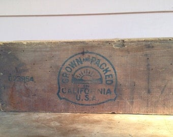 Vintage Packing Crate Grown and Packed in U.S.A.  25 LBS  Golden  Glory Prunes  Califorina