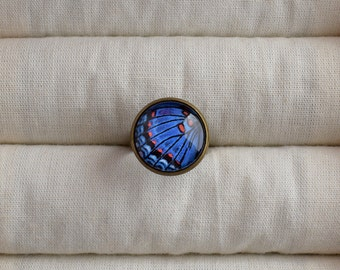Blue butterfly ring, Butterfly wing picture ring, Nature jewelry, Blue ring Butterfly jewelry, Adjustable brass ring, Glass dome ring NJ 025