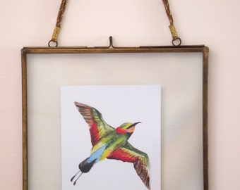 Hand painted water colour original of a Rainbow Bee eater for digital download