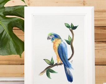 Watercolor painting Colorful parrot Wall art