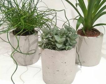 Large Concrete Planter/Vase