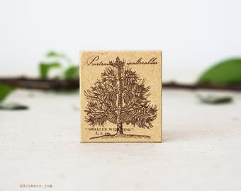 NEW Willpine Tree Rubber Stamp