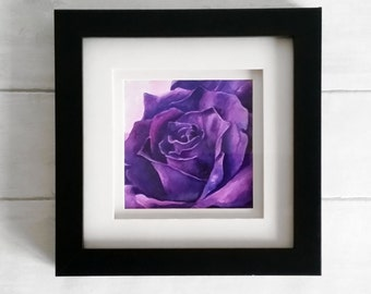 Purple rose watercolour and ink original painting, framed and mounted in a black frame.