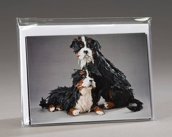 Critter Greeting Cards Set