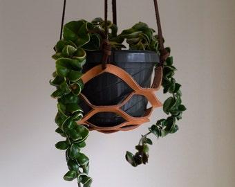 Rosa Plant Hanger