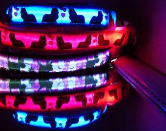 Yorkie, Scottie, Boston Westie, Schnauzer, AmStaff Terrier, Frenchie, French Bulldog dog collar w/ LED glow lights
