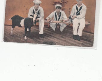 WW 1  Three Sailors With Goat Mascot Antique Postcard PM 1909