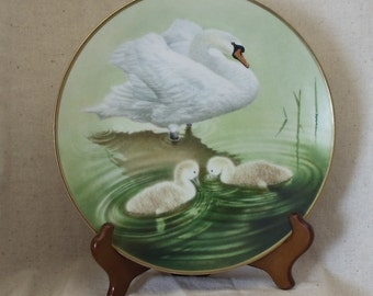 """Vintage Danbury Mint Collection 12 Waterbird Plates,""""Mute Swan"""", by Eric Tenney,Bavarian Porcelain, West Germany,#VB8019"""