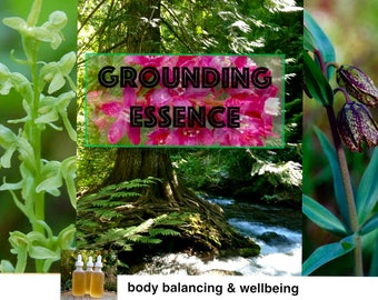 Grounding Essence, Flower Essence, Formula, Health, Body Balance, Clarity, Anchoring, Presence, Be Here Now, Wellbeing