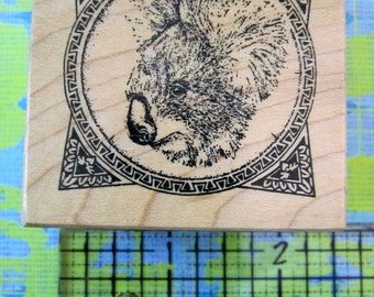 small framed koala bu taylored artwork