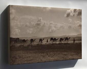 Canvas 16x24; Camel Transport Egypt Passing Over Olivet, 1918