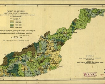 16x24 Poster; Forest Map West North Carolina 1909
