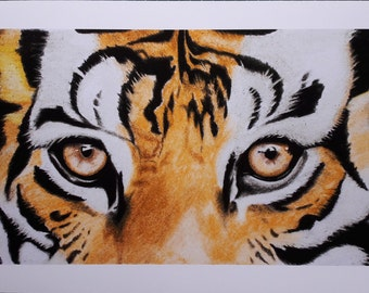 Tiger Eyes Print, Tiger Drawing - Sizes 11.69 x 5.7in, 16.54 x 8.07in and 8.25 x 4.1 Inches