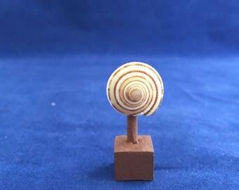 1:12th scale Dollhouse Miniature Decorative Shell on Wood Base