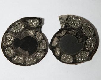 Pyritized Ammonite Cabochon pair, 27x23x4 mm