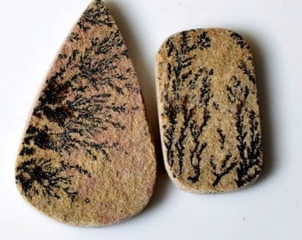 2 pieces Natural Psilomelane Dendrite Fossil Tree Agate Cabochon,Dendritic fossil agate 34 to 48mm Assort Loose Gemstone Cabochons