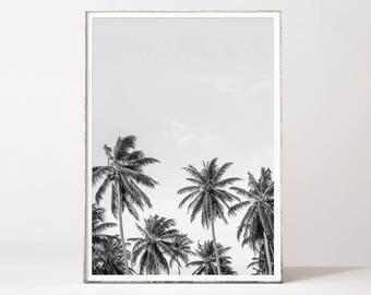 Palm print, palm tree print, black and white palm tree, palm tree photo, tropical art black and white, tropical print, palm tree photo