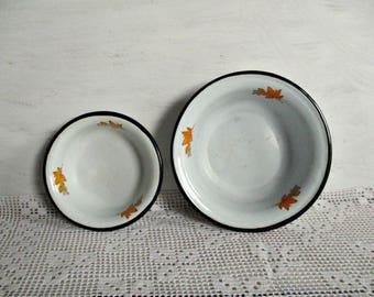 Vintage enamel bowl /set 2 PCs/enamel cookware/ small enameled plate/ Botanical /